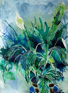 Revealing the Peace Lily